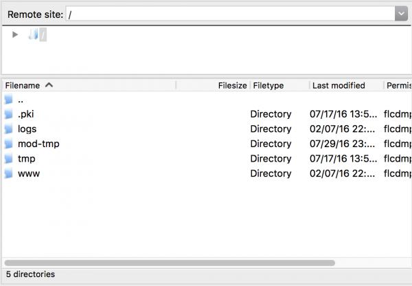 Панель со списком файлов на хостинге