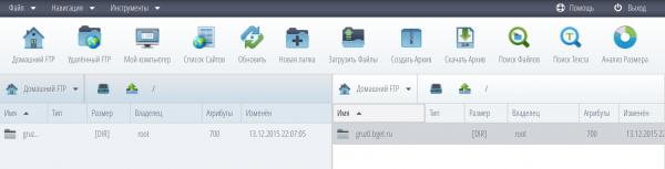 Внешний вид файлового менеджера Бегет