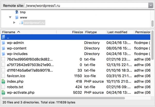 Подключаемся к FTP хостинга