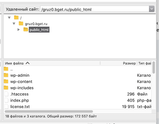 Список файлов хостинга после подключения